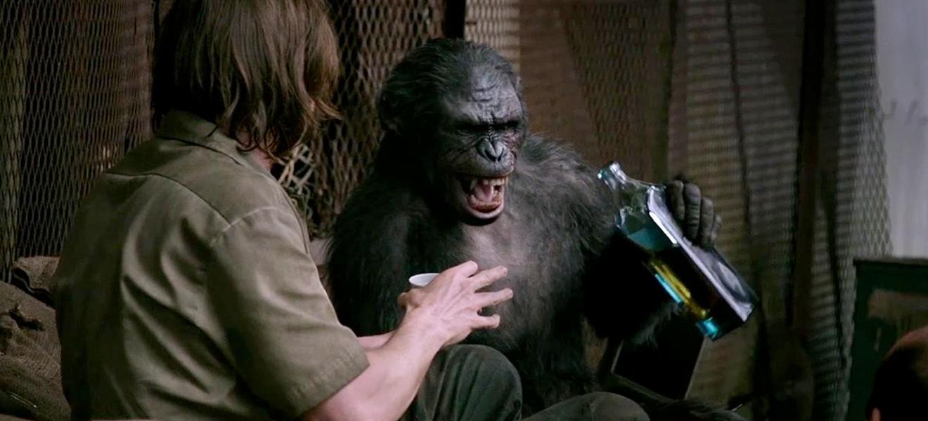 Würde mich nicht wundern, wenn hier einer einen gewaltigen Affen davonträgt...